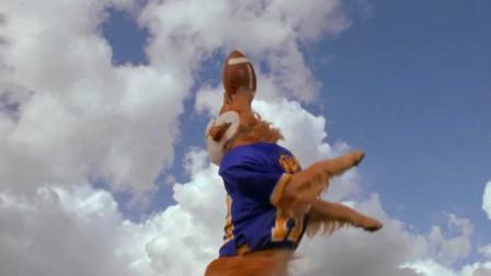 狗狗成为金牌接球员,因此引来了嫉妒,赛场上被暗算受伤