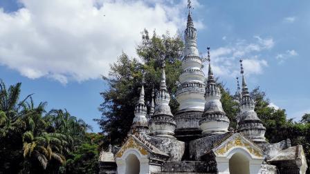 云南西双版纳旅游景点,野象谷坐缆车,寻野象,景洪曼听公园看鹦鹉表演、骑大象