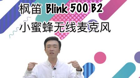 【闲侃】画面以外的就不重要吗?枫笛Blink500麦克风上手体验