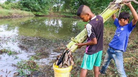 农村小孩拿香蕉树捕鱼,大鱼挤满树内,这些鱼值不值一车香蕉?