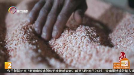 云南:稻米之味:红曲米|都市条形码06016
