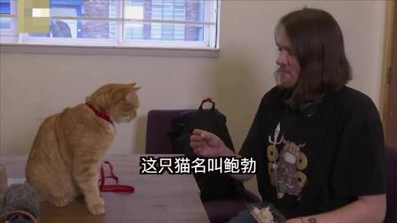 """""""流浪猫鲍勃""""去世!那只治愈了全世界的橘猫,离开了这个世界"""