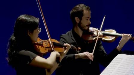 String Trio and Quartet: Schubert Beethoven Dvorak