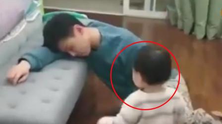 前一秒弟弟抓着哥哥衣领,下一秒哥哥做出反应,令网友笑到肚子疼