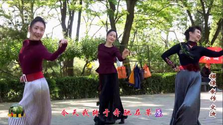紫竹院广场舞《梦回草原》,小红、王鹤、小表姐,深情演绎!