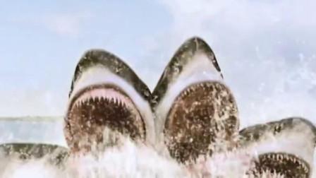 大白鲨变异,长出五个头,中国网友:剁椒鱼头给我安排上!