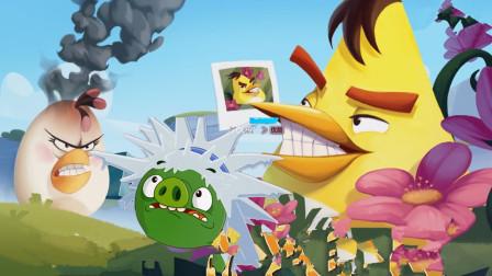 愤怒的小鸟遇到了从天而降的金猪结果?
