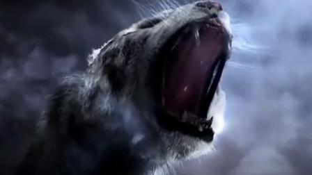 秒杀山海经四大凶兽的上古四大神兽,青龙白虎朱雀玄武!