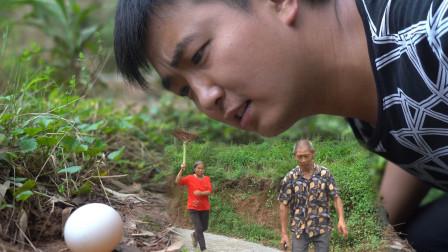 """老王有李农村小品之《捡蛋记》, 看老王如何""""搬起石头砸自己的脚"""""""