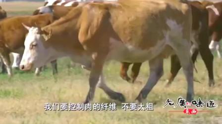 老广的味道:潮汕牛肉火锅,要口感好,要从一个活牛讲究起来