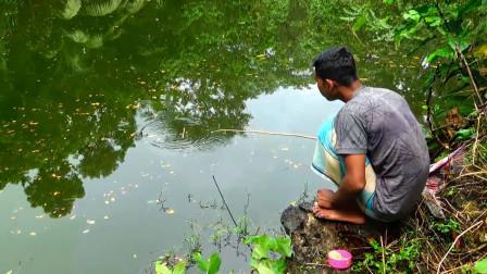 无人管理的水塘,小哥抛几竿,鱼饵下水几秒就上鱼,太过瘾了!