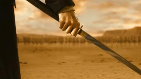 顶级剑客大战杀手组织 刀刀毙命 所到之处 片甲不留 尸横遍野!