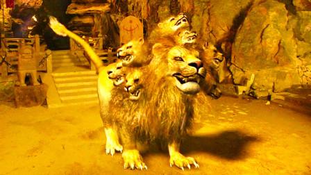 九头狮子精为何是最倒霉的妖怪?因太溺爱后辈,最终做回神仙坐骑