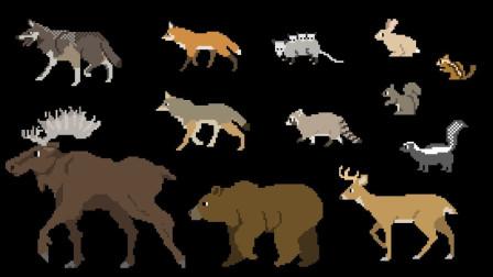 骆驼浣熊狐狸松鼠等小动物集合