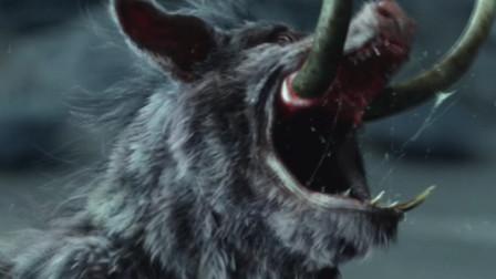 猪八戒投成猪胎后,先咬死了母猪和猪兄弟?他为何这么狠心?