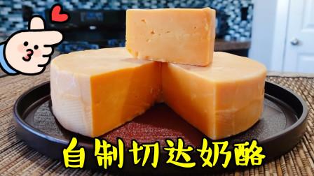 教你在家自制美味的切达奶酪,做法简单有趣,口感不比买的差哦!