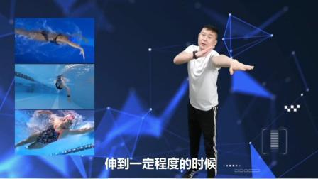 自由泳划臂技术发力技巧详细讲解