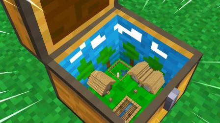 双人制作1X1的箱子田园空间?
