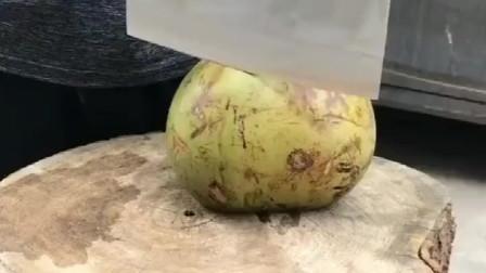 河南人在海南:60块钱买的椰子,咋没果肉啊?我是不是被骗了?