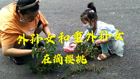 端午节,带外孙女,重外孙女踩樱桃