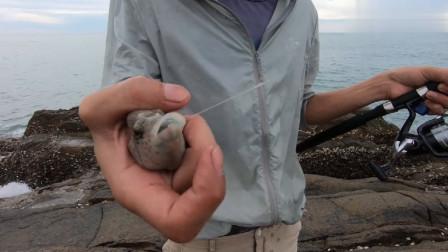 海南小伙趁着天气不错去钓鱼,海面波涛汹涌海底的渔群太兴奋了,大哥接连上钩  今天收获又是满满的一天