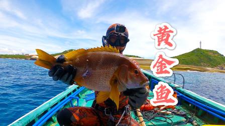 阿镭组团去深海捕鱼,在12米深的地方,打到300块一斤极品大鱼