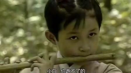 白素贞小时候这么美,许仙居然是个放牛娃