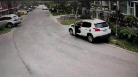 警察叔叔,像这样的女司机可以吊销驾照了吧,我还想在多活几天呢!
