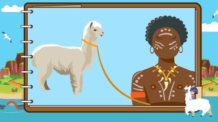 育儿动物小常识—羊驼原产地是不是中国