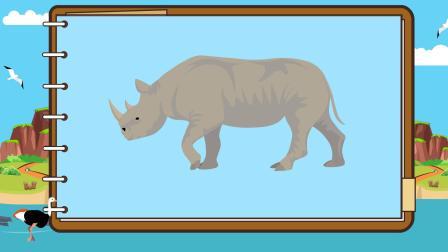 育儿动物小常识—犀牛的角有什么作用