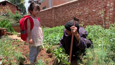 95岁老人在孙子家,闲着没事做就拔草,重孙女看到后如何待老祖