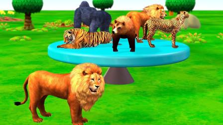 狮子老虎围着转盘找朋友益智动画学颜色