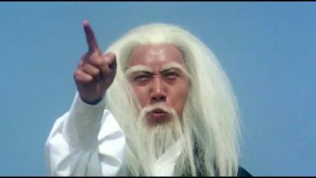 三十六迷形拳:白胡子老头是个高手,小伙招架不住,被打惨!