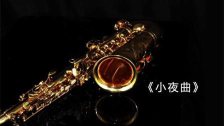 萨克斯演奏世界名曲,舒伯特《小夜曲》全世界最温柔的旋律,好听