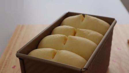 TongZhong Hokkaido Milk Loaf 湯種北海道牛奶土司