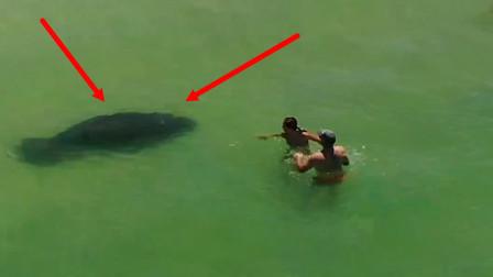 """男子在海里游泳时,遭一个""""黑影""""尾随,眼看就要发生危险"""