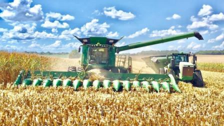 看看国外的玉米收割机,一个小时能收20亩地!看完惊到了