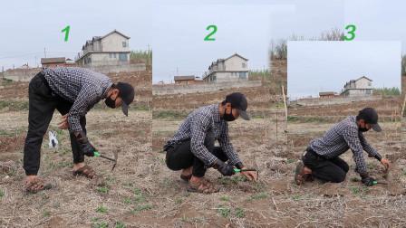 拔草的三个基本动作,哪一种更有效率呢?
