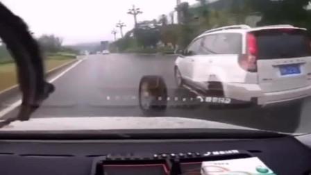 监控:轮胎都想放假了,