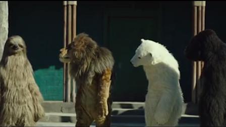 没有动物的动物园,为了营业,员工装扮成动物亲自上阵,大型cosplay现场