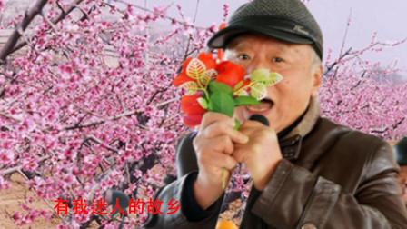 75岁张路生老师演唱《桃花盛开的地方》