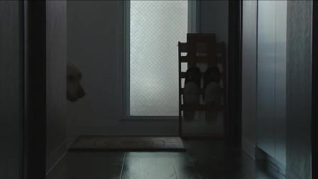 狗狗与你的故事:女人回家后发现丈夫失踪了