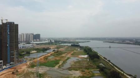 """航拍广东湛江赤坎区""""300亩""""新增湿地,用于扩建公园,猜猜在哪"""