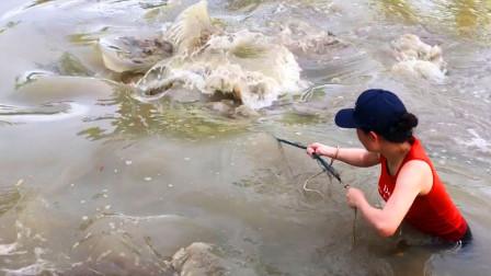 三表姐抓到2条大鱼,鱼太大,直接把她拖下水了!