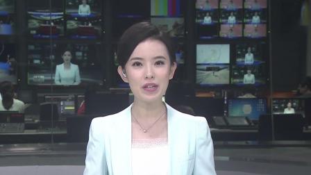 第一时间 辽宁卫视 2020 探访疫情防控下的新发地批发市场