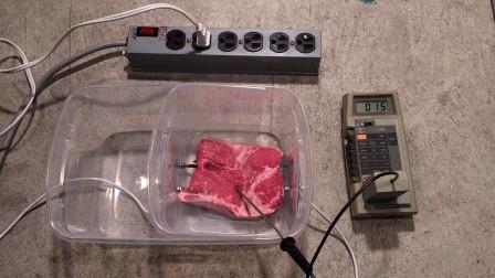"""高压电有多危险?男子用生肉做实验,几秒过后肉""""熟""""了!"""