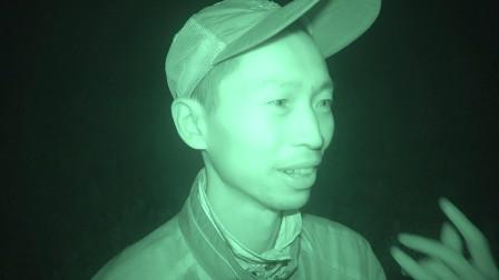 夜间园艺:凌晨半夜到地里巡逻看看,会有什么意外发现!