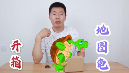 地图龟开箱:买了1只呆萌呆萌的地图龟,鳄龟终于不孤单了