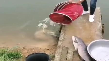 大哥,出来抓鱼就带这样的盆?这下尴尬了吧!