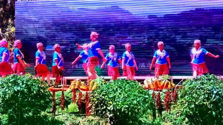远方的朋友,山外的客,伴着歌舞跳起来,好好看的舞蹈哦